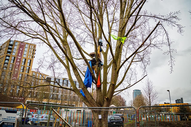 Tree protectors in York Gardens, Battersea. Credit: Anthony Jarman.