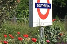 Southfields Grid Alliance Formed